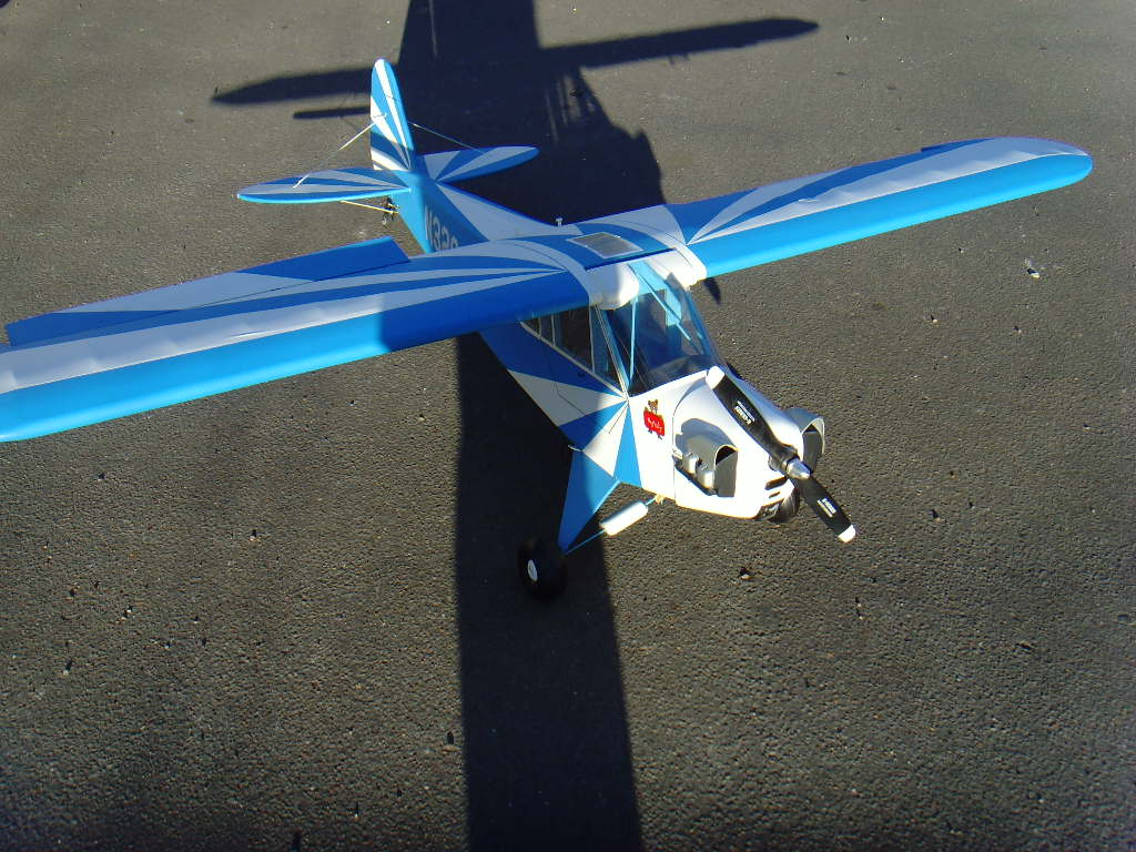 photo of: SIG 1/4 Scale Clipped Wing Cub