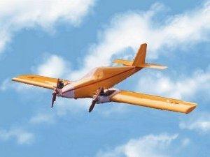 Pegasus Models Twin Hornet
