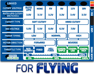Castle Creations Field Link Programmer (Flying)